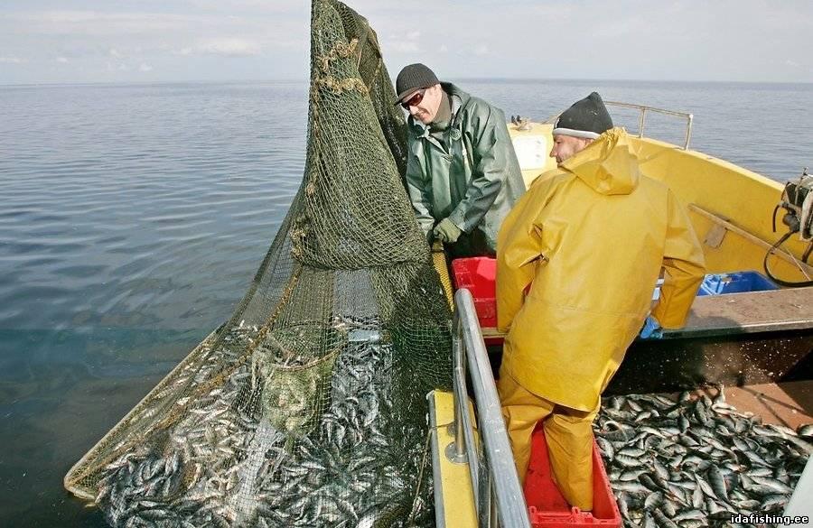 рыболовный рыболовецкий когда