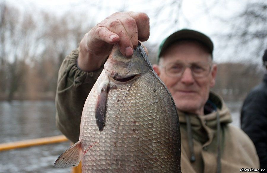 купить рыболовный в эстонии