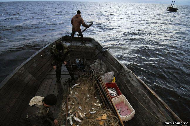 закон о рыбалке в новгородской области
