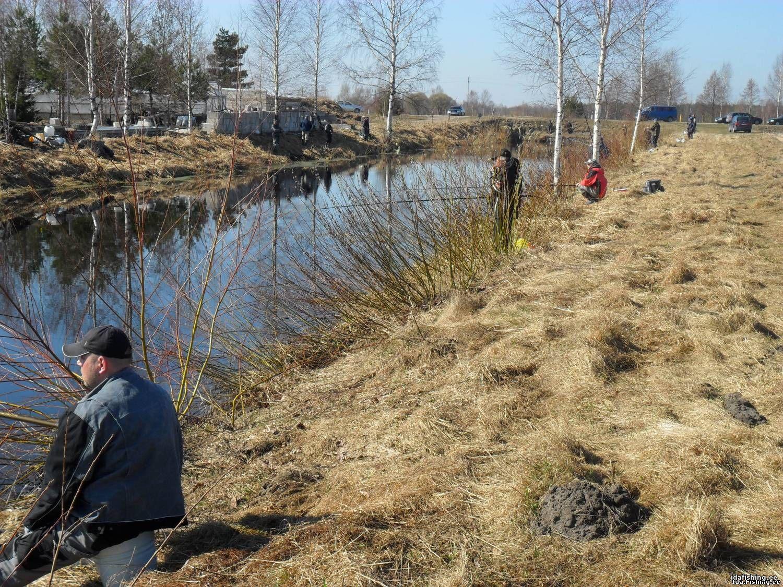 3 способа оплатить государственную лицензию на рыбалку