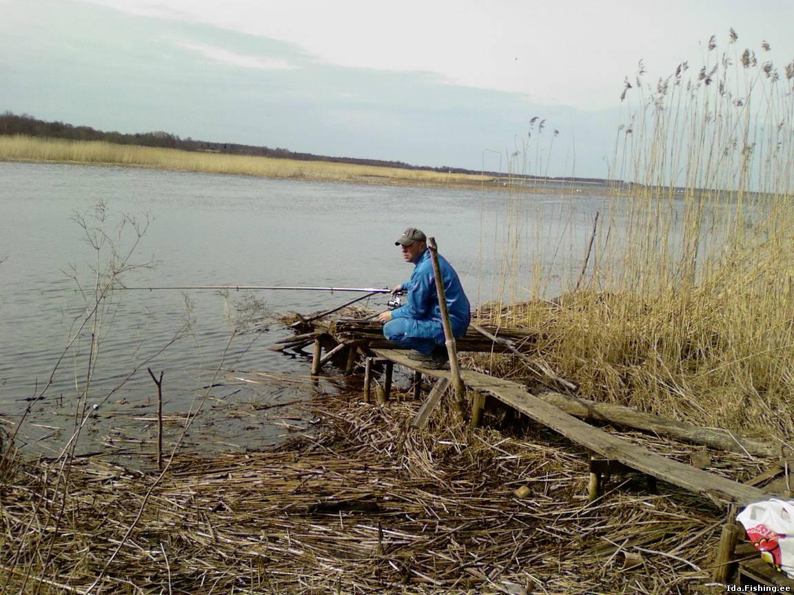 рыбалка в эстонии тарту
