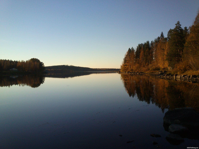 Финляндия (Laukaa,01.10.2014)