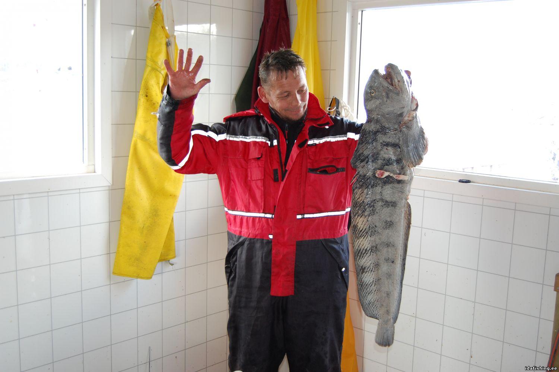 Тармо и wolffish 10 кг.
